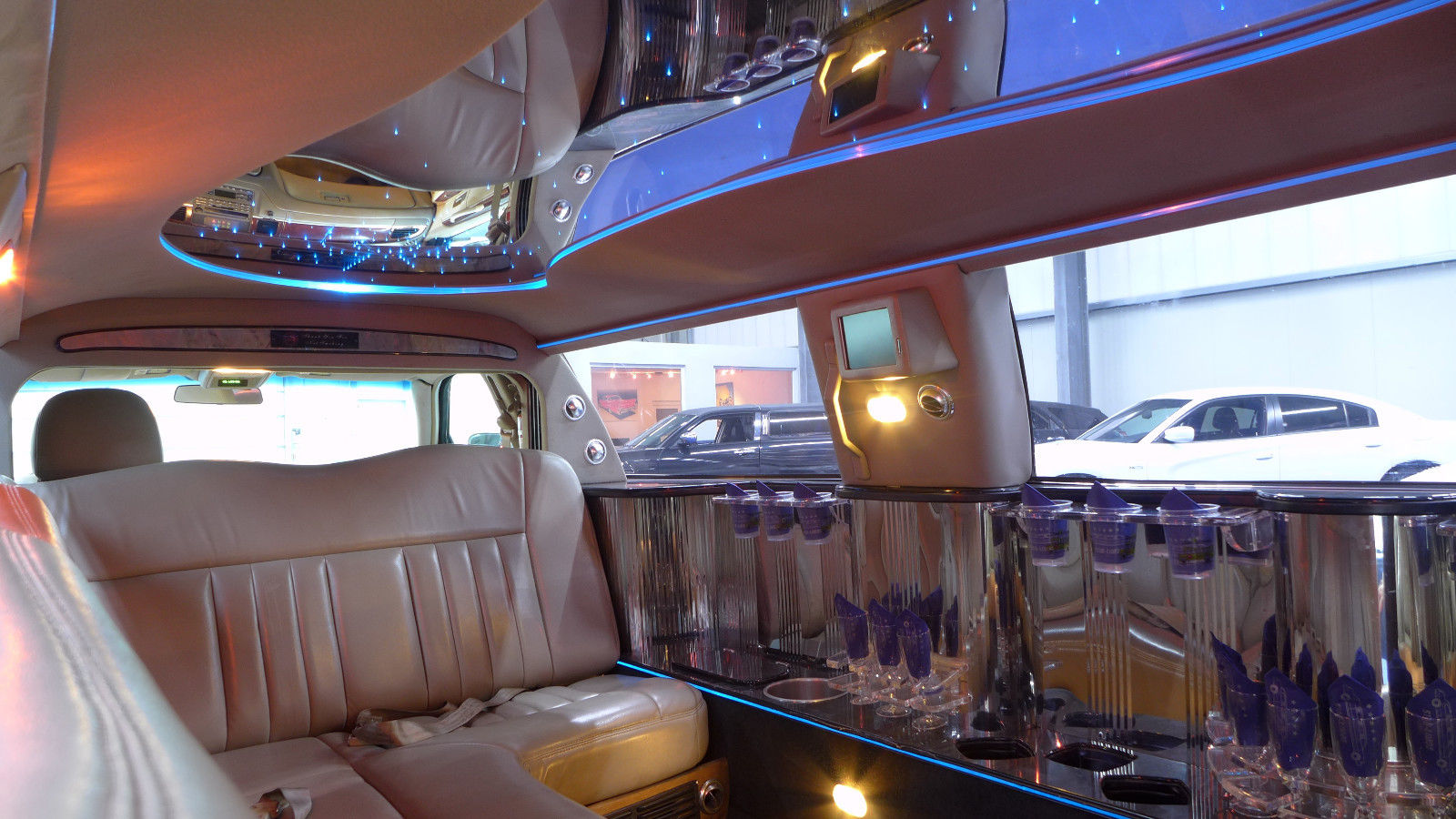 Party Limos - Galerie foto #9