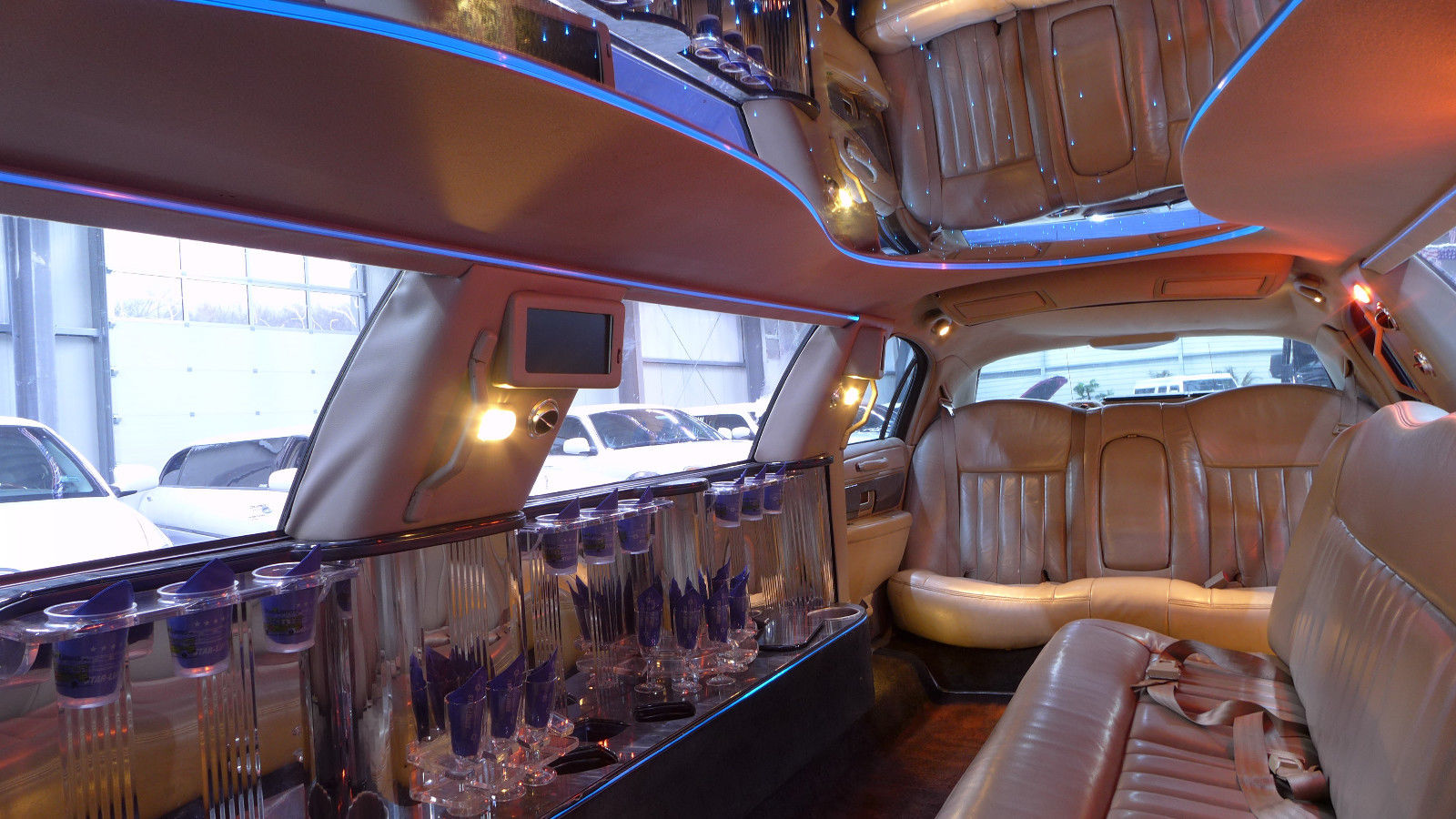 Party Limos - Galerie foto #12