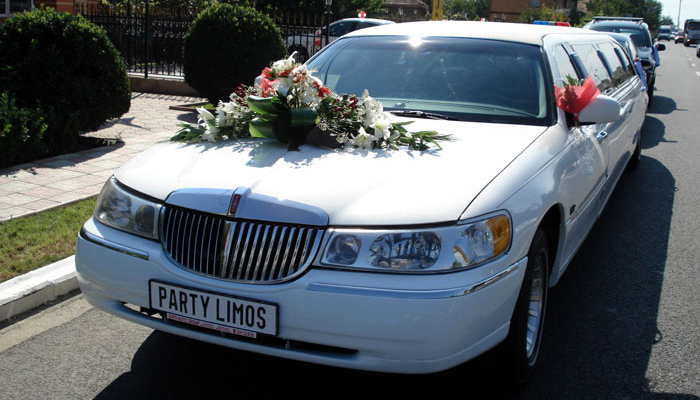 Party Limos - Galerie foto #15
