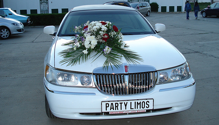 Party Limos - Galerie foto #18