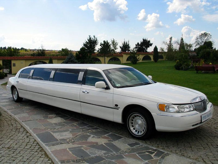 Party Limos - Galerie foto #30